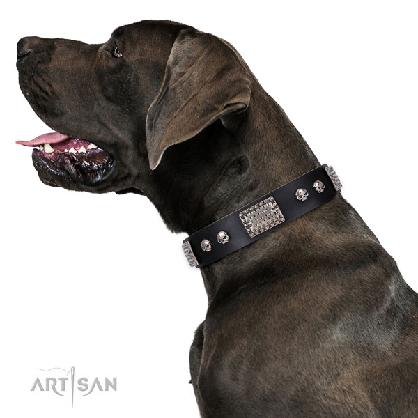 Unusual full grain natural leather collar for your attractive canine