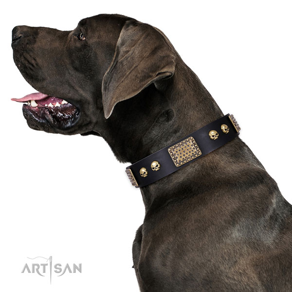 Adjustable leather collar for your beautiful dog