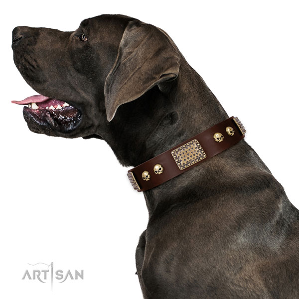 Corrosion proof traditional buckle on full grain genuine leather dog collar for comfy wearing
