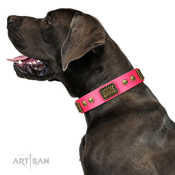 Corrosion proof hardware on genuine leather dog collar for basic training