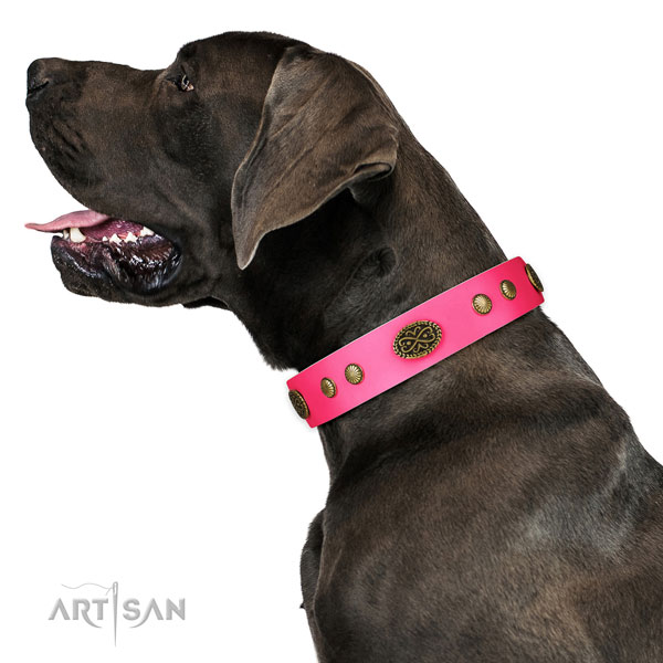 Rust-proof D-ring on natural leather dog collar for stylish walking
