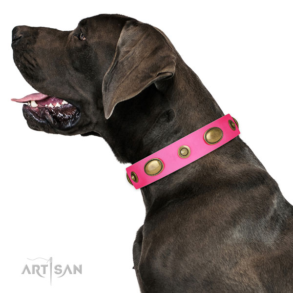 Easy wearing dog collar of leather with remarkable decorations