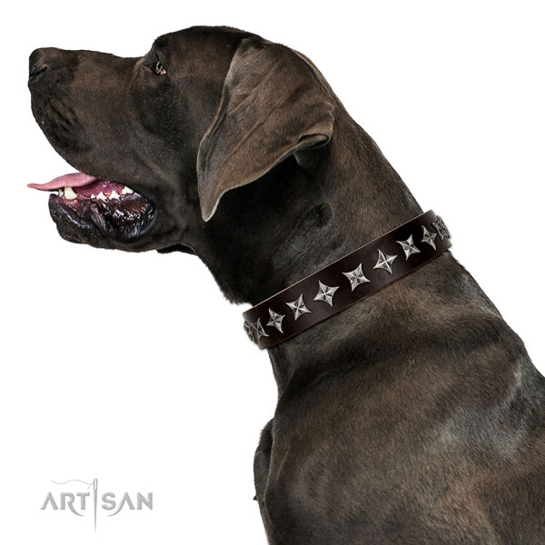 Handy use decorated dog collar of reliable natural leather