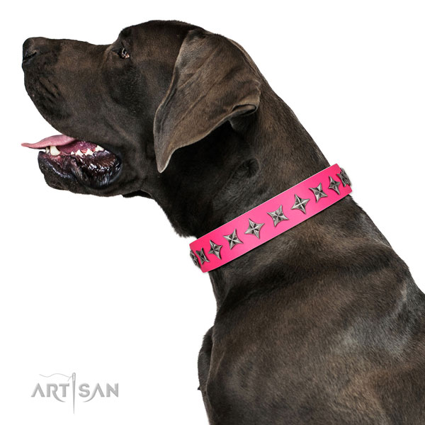 Fine quality full grain genuine leather dog collar with unique studs
