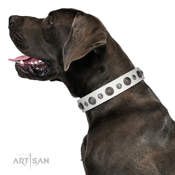 Comfortable genuine leather dog collar with corrosion proof buckle