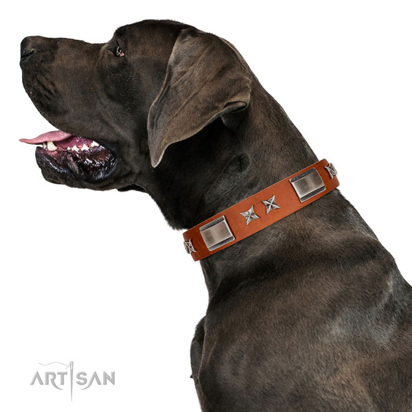 Easy wearing gentle to touch natural leather dog collar with decorations