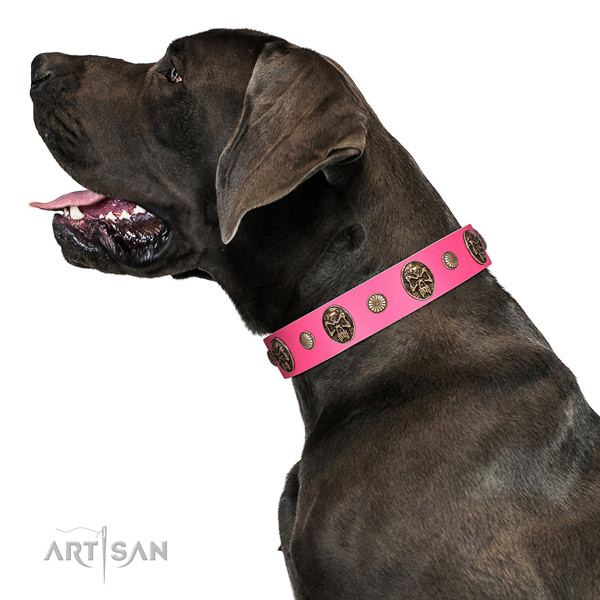Rust-proof D-ring on natural genuine leather dog collar for stylish walking