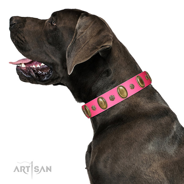 Soft leather dog collar with corrosion resistant D-ring