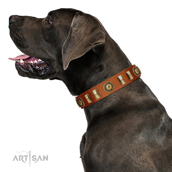 Comfortable full grain natural leather dog collar with corrosion resistant hardware