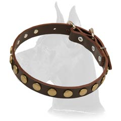 Great-Dane-Collar-With-Circles-small