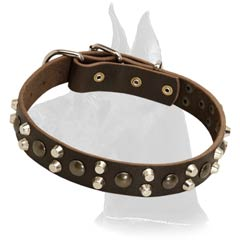 Beautiful Leather Collar