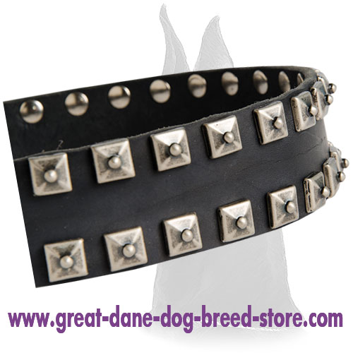 Fashionable Studded Leather Collar for Great Dane