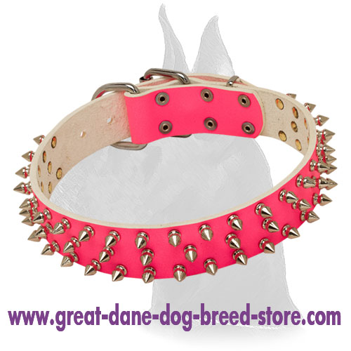 Great Dane Pink Spiked Leather Collar