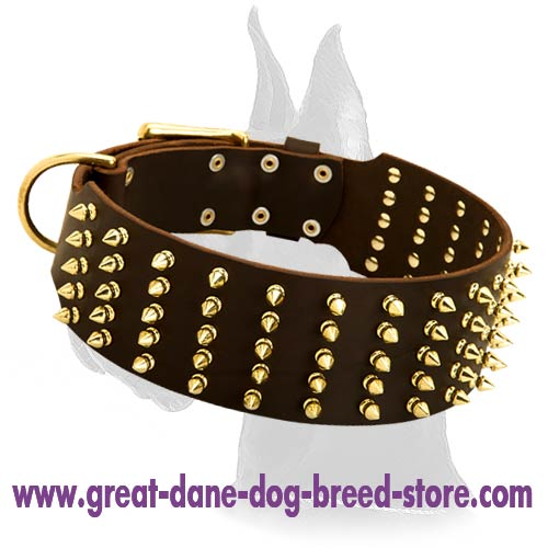 Walking Dog Collar Wide with Spikes