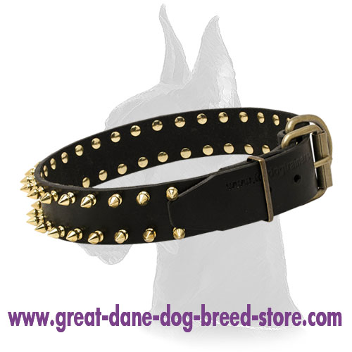 Unbelievable Leather Collar with Gold-Like Spikes