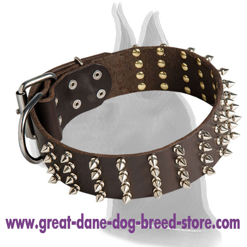 Extra Wide Leather Collar with Spikes for Great Dane