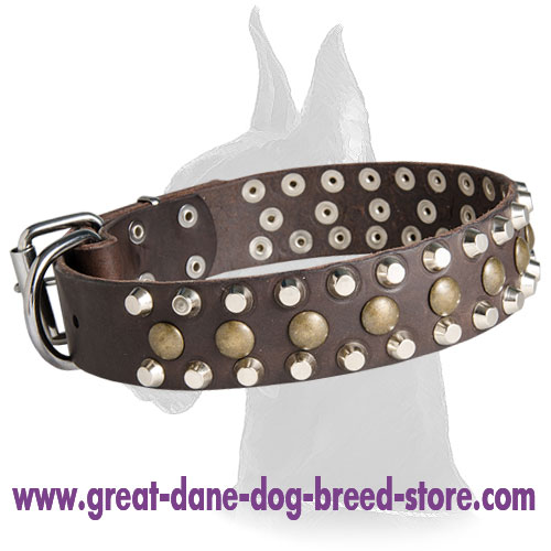 Great Dane Wide Leather Collar with Studs and Pyramids