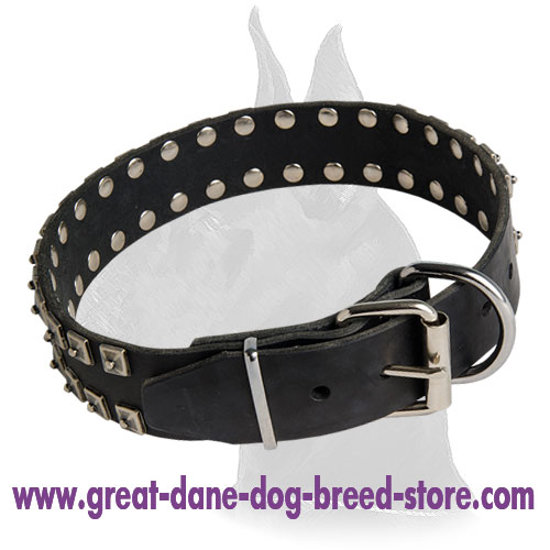 Great Dane Leather Collar with rust-proof fittings