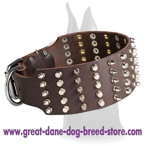 Daily Walking Spiked and Studded Great Dane collar