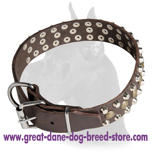 Leather Collar With Nickel D-ring for Great Dane