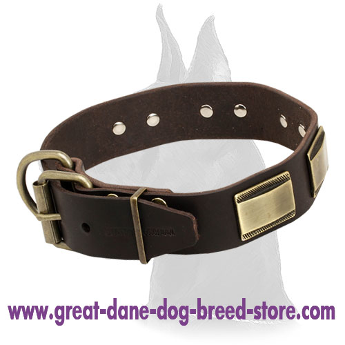 Designer Leather Collar for Great Dane