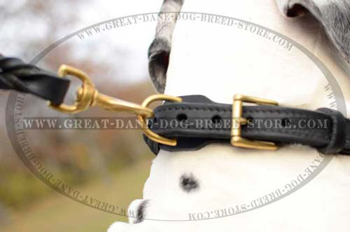 Multipurpose Great Dane Leather Collar