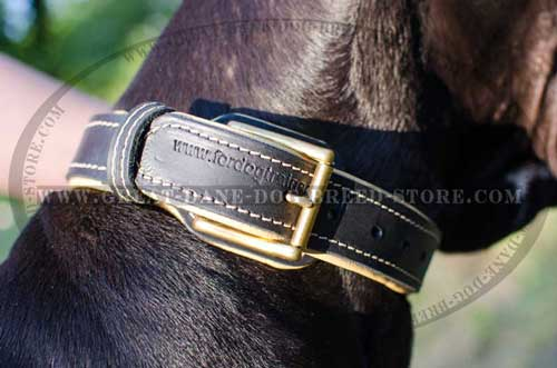 Great Dane Leather Collar with brass fittings