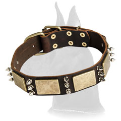 Great Dane Leather Canine Collar