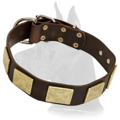 Great Dane Leather Dog Collar with plates