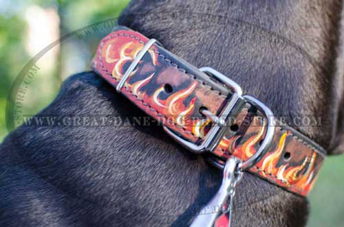 Great Dane Leather Collar with rustproof hardware