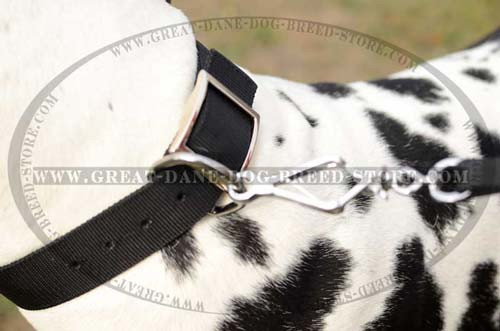 Wet resistant Great Dane Nylon Dog Collar