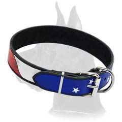 American Pride Leather Collar
