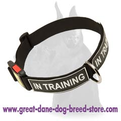All  Weather Nylon Collar
