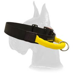 Reliable Nylon Collar