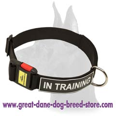 Multifunctional Nylon Collar