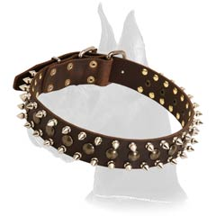Wide Spiked Collar