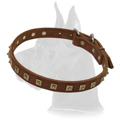 Wonderful Studded Dane Collar