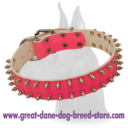 Fancy pink Leather Collar