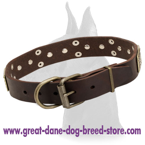 Great Dane Leather Collar with Nickel D-ring