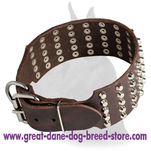 Comfortable Leather Collar With Nickel Pyramids for Great Dane