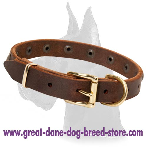 Trendy leather collar with metal decorations