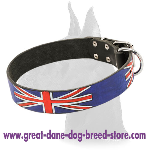 Fashion Leather Great Dane Collar for Walking