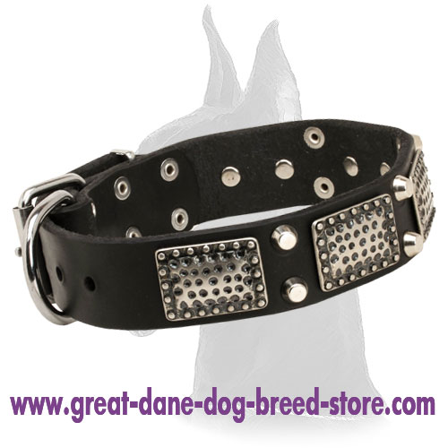Leather Collar Nickel Plated Studs and Pyramids for Stylish Dogs