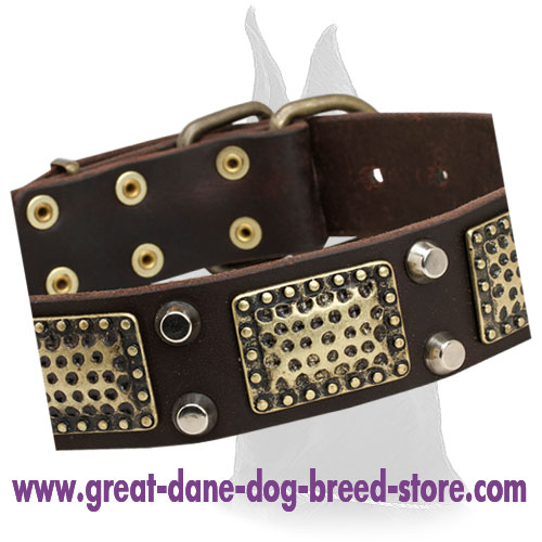 Daily Walking Great Dane Leather Collar