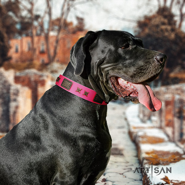 Great Dane stylish design leather collar with rust-proof buckle