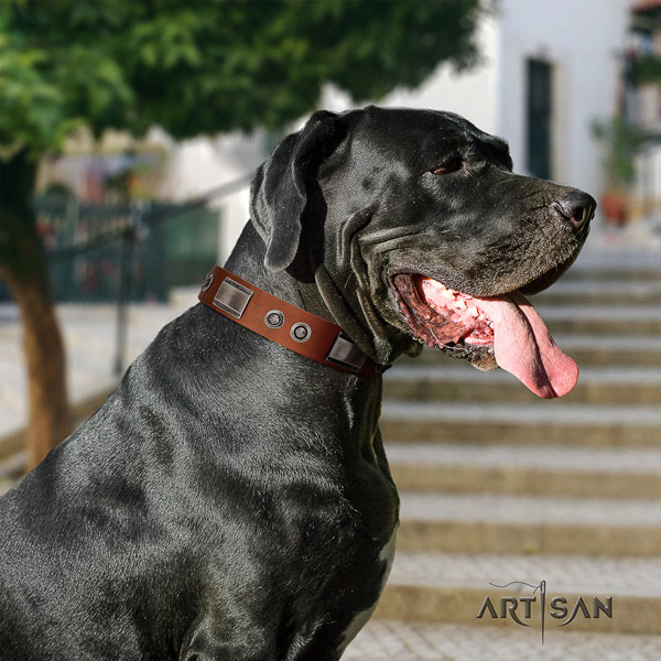 Great Dane convenient full grain natural leather collar with rust-proof hardware