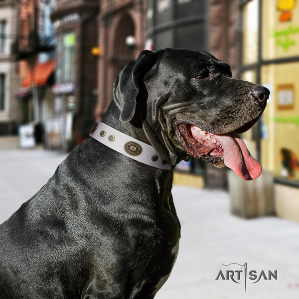Great Dane convenient collar with extraordinary decorations for your doggie