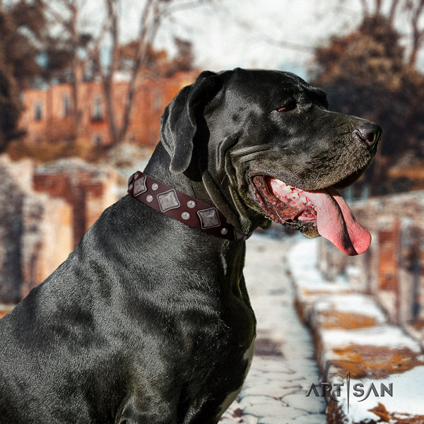 Great Dane handcrafted collar with extraordinary studs for your doggie