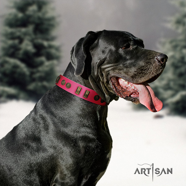 Great Dane fine quality full grain natural leather collar with rust-proof buckle