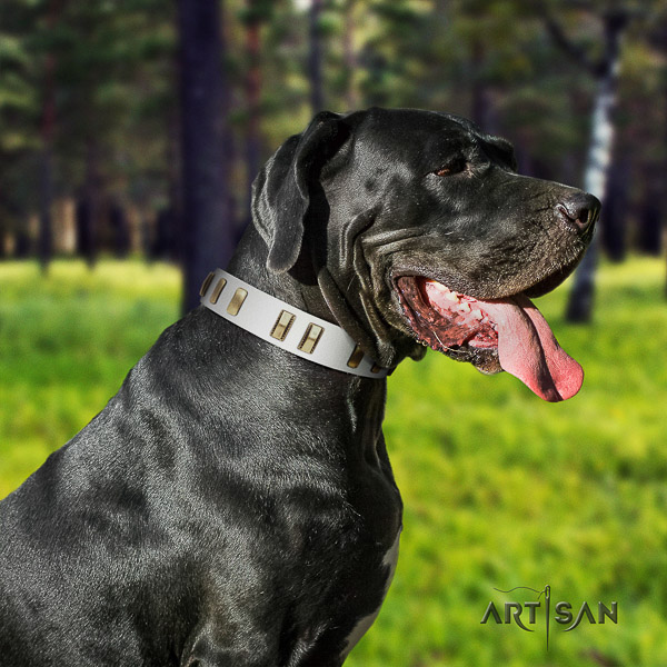 Great Dane easy wearing full grain natural leather collar with decorations for your pet